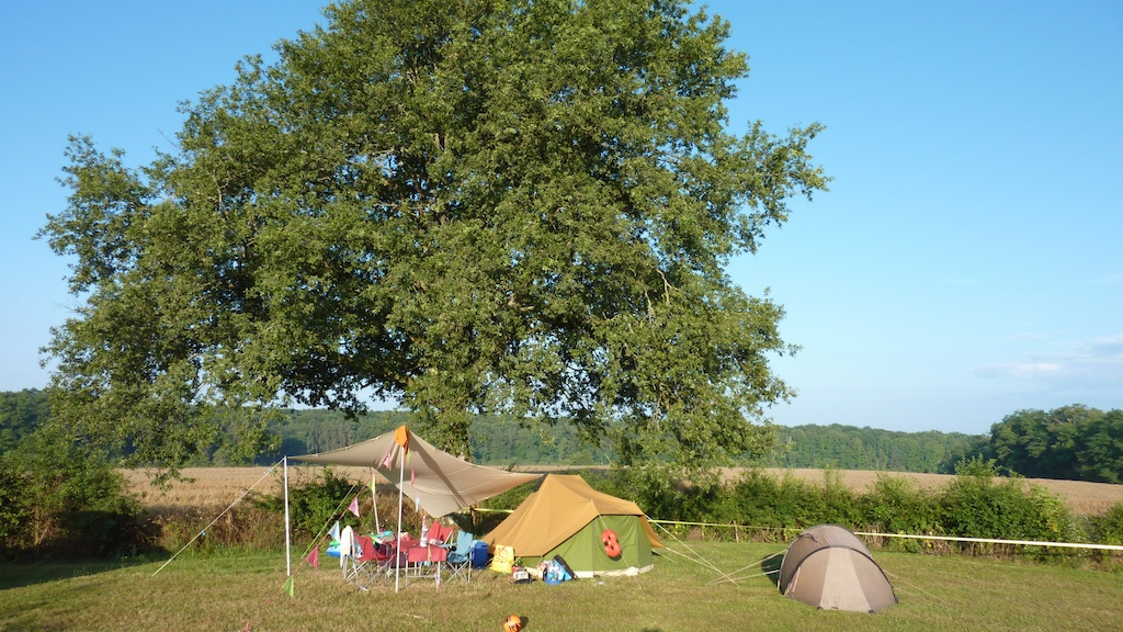 Plot Nr.3 at the big Oak tree