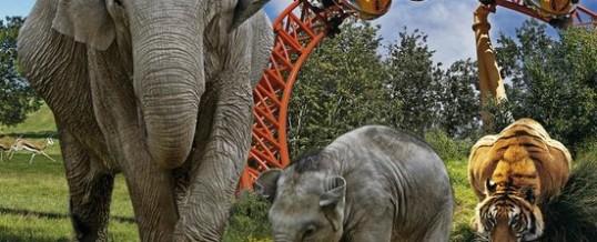 Vandaag 27 Juli mooie dag voor een dierenpark